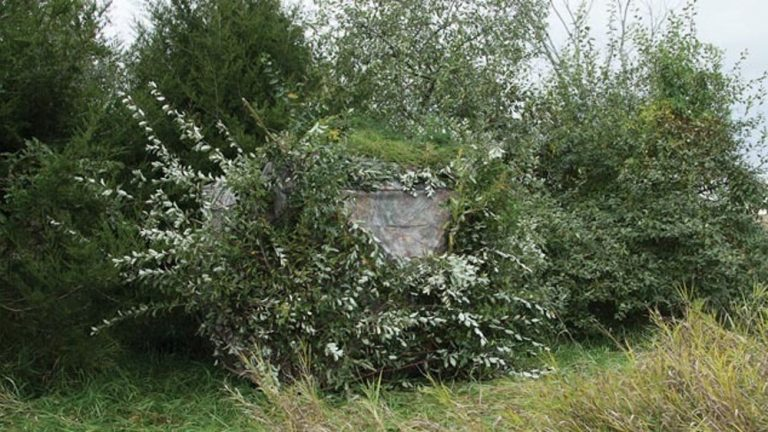 10 Tips to Setting Up a Ground Blind