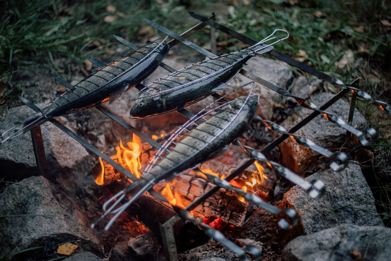 Campfire Trout Recipe